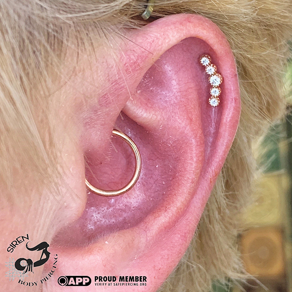 fresh Daith and Helix with yellow gold